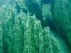 filipiny-barracuda-lake-15.jpg