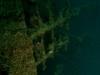 nurkowanie-na-filipinach-5