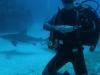 nurkowanie-kuba2.jpg