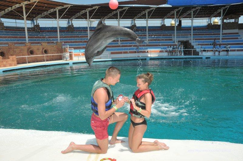 delfiny-i-zareczyny-015