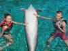 delfiny-i-zareczyny-008