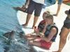 delfiny-i-zareczyny-016