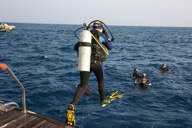 dives1.jpg