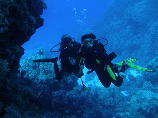 dives6.jpg