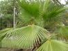 rpa-mozambik-przyroda-9.jpg