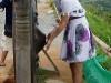 tajlandia-tajlandia-phuket-kultura-i-obyczaje-7.jpg