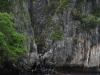 tajlandia-wyspa-phi-phi-3.jpg