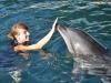trening-delfinow-i-vip-z-delfinami2.jpg